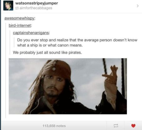 Ships and canons -- pirates or fanfics?