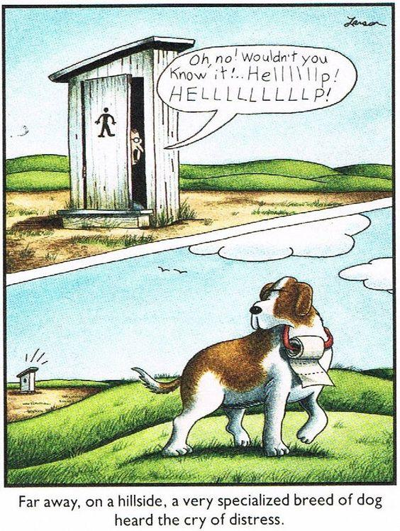 Far Side St. Bernard