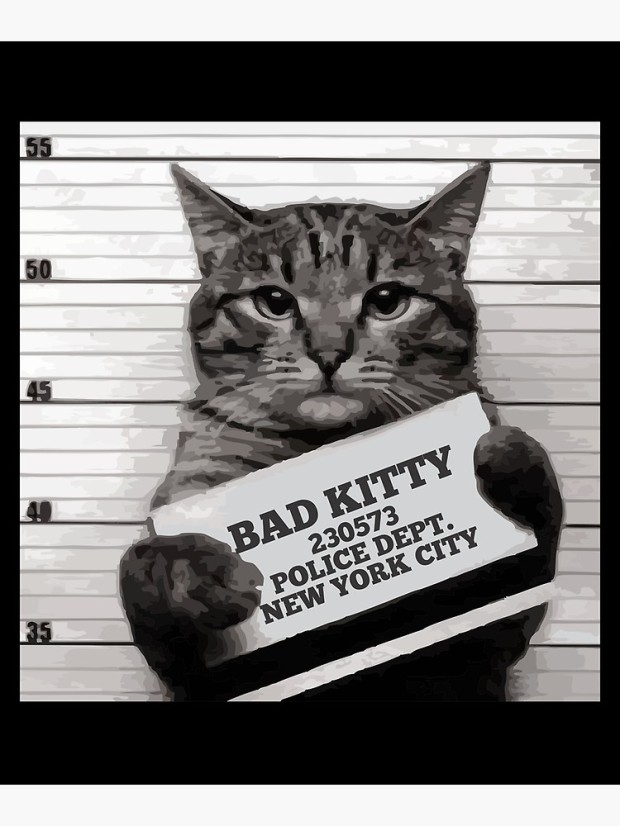 Cat Mugshot