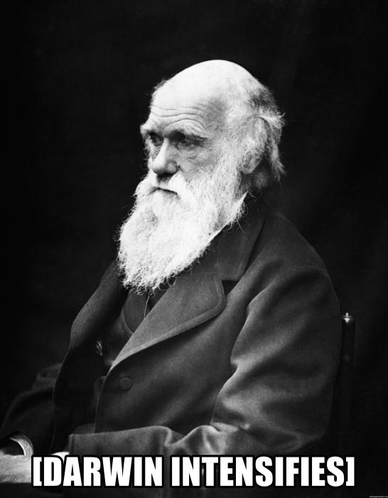 Darwin Intensifies